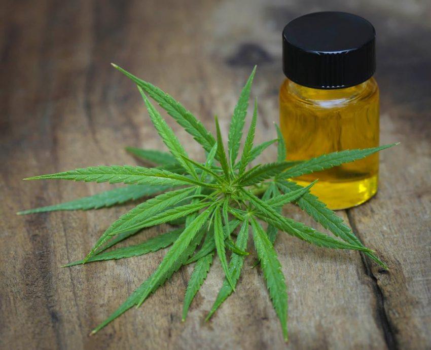 Medicinsk cannabis kan lindre smerter